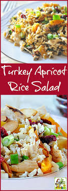 looking for healthy turkey leftover recipes try turkey apricot