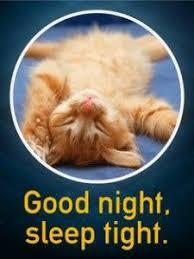 Good Nite Memes - good night sleep tight meme pictures hilarious good night meme