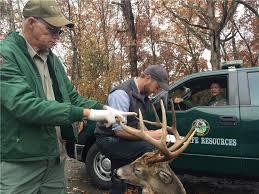 a big buck amounts to big bucks in restitution in jefferson county