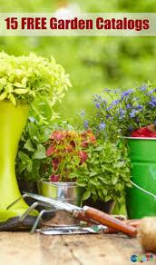 Free Home Decor Catalog Request Best 20 Garden Catalogs Ideas On Pinterest Suculent Plants