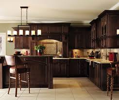 Kitchens With Maple Cabinets Dark Maple Kitchen Cabinets Decora Cabinetry