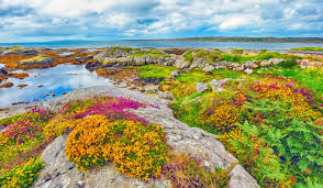 the irish bucket list 30 things to do in ireland before you die
