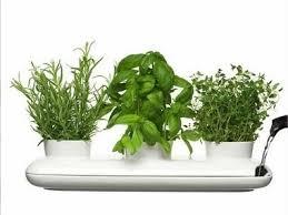 objets deco cuisine objet de decoration pour cuisine cuisine naturelle