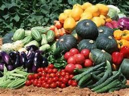 plant a vegetable garden why bother the garden troubadour