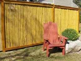 Backyard Privacy Screen by 36 Best Deck Ideas Images On Pinterest Backyard Privacy Privacy