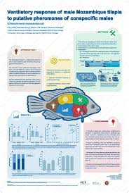 21 best academic poster images on pinterest poster designs