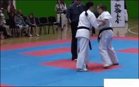imagenes gif karate knockout karate gif wifflegif
