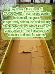 prepare raised garden bed google search vegetable gardening