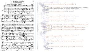 sample encodings mei