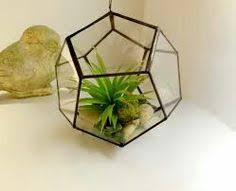 large hanging terrarium geometric glass terrarium by jacquiesummer