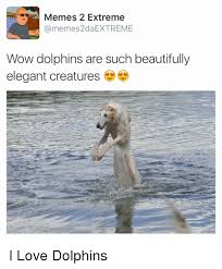Extreme Memes - memes 2 extreme ca ilmemes2daextreme wow dolphins are such