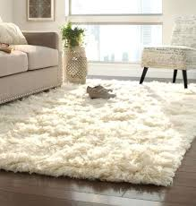 Plush Area Rugs Soft Plush Area Rugs Goldenbridges In Remodel 10 Willothewrist
