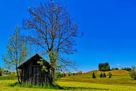 sunny sky wallpapers group 67