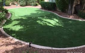 Turf For Backyard by Artificial Turf Company In Scottsdale Arizona