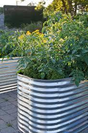 137 best garden ideas images on pinterest plants gardening and