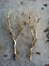 tree branch decor white branches decor unique tree branch ideas on and black