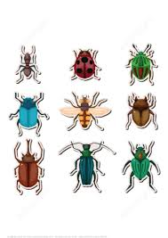 insects printable stickers free printable papercraft templates
