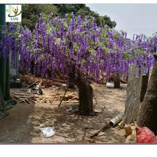artificial wisteria trees on sales quality artificial wisteria