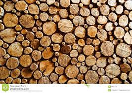 wood log wood log backround stock image image of backgrounds ecology