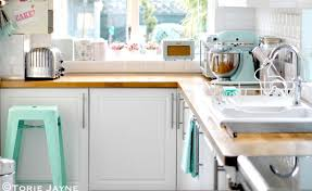 5 things to know about mice in the kitchen kitchn