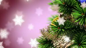 beautiful christmas background seamless looped 3d animation with