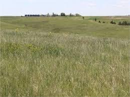 Sale Barns In Nebraska Nebraska Land For Sale Nebraska Acreage For Sale Nebraska Lots