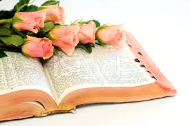 Peach Roses Peach Roses And Bible Stock Photos Freeimages Com