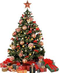 christmas tree pictures christmas tree png images free download