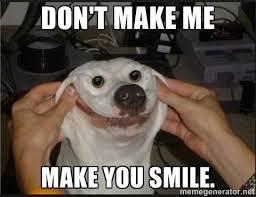 Funny Smile Meme - grumpy cat meme smiling meme center