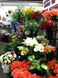 j foss garden flowers