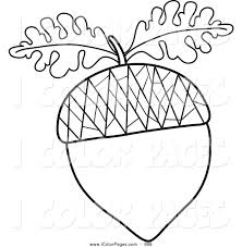 acorn tree coloring page tree colouring pages acorn coloring