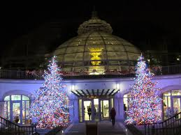 holiday things to do phipps conservatory in oakland pittsburgh