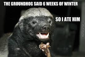 Meme Honey Badger - honey badger hunting