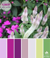 Green Color Palette by Flowery Fuchsia Color Palette Lines Across