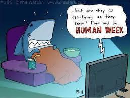 Shark Week Meme - human week shark week know your meme