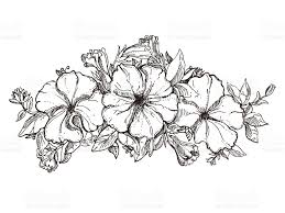 black and white hand drawn floral ornament with petunia flower