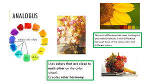 Different Color Schemes For The Instructor Standard Covered Floral Design Ppt Download