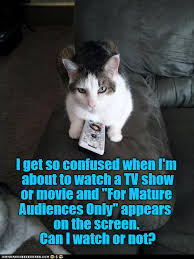 Funny Confused Memes - lolcats confused lol at funny cat memes funny cat pictures