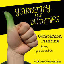 herb growing chart gardening for dummies companion planting free printable