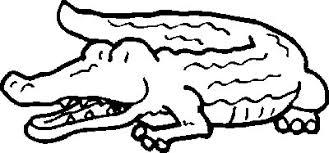 coloriage Crocodiles sur COLORIAGE ANIMAUX coloriages Crocodiles a