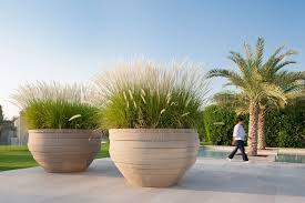 big picture ornamental grasses planters and atelier