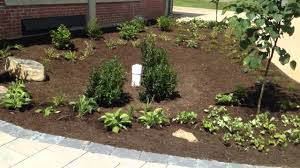 native plants to maryland rain garden installation with native plants cecil county md youtube