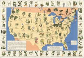 Map Of United States Of America by History Of Medicinal Plants Map Of The Plants In The United