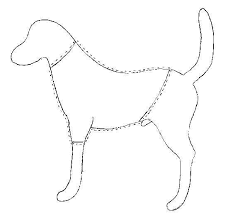 shirt pattern for dog free dog clothes pattern what measurements you need to make a