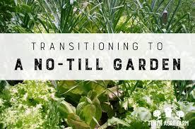 transitioning to a no till garden tenth acre farm