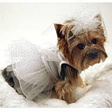 dog wedding dress dog wedding dress