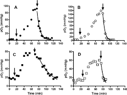Challenge Breathing Evolution Of The Po 2 During Breathing Challenge In Tumor And