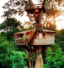 Top 10 Most Creative Treehouses  Environment  InfoNIAC  Latest