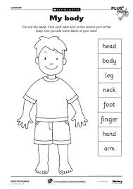 body parts worksheet can use as a dictionary to label parts