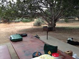 coral pink sand dunes campground coral pink sand dunes ut 3